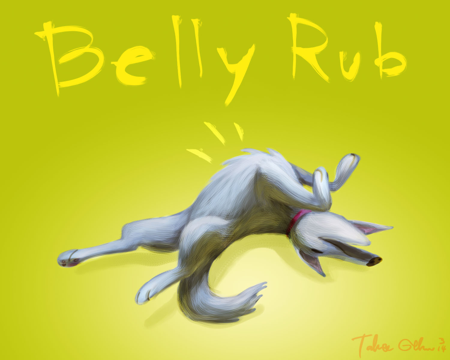dog1-bellyrub
