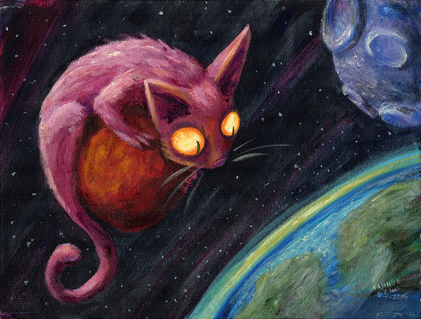 spacecat-blog